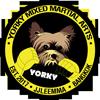 Yorky MMA